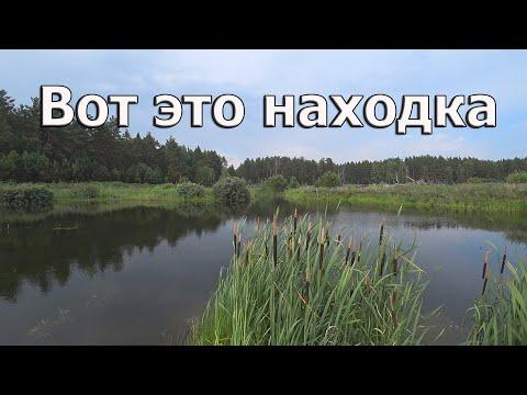 #Озеро Вот это находка / Нашел неизвестное озеро по середине леса