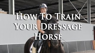 HOW TO TRAIN YOUR HORSE? - Dressage Mastery TV Episode 147