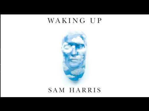 Sam Harris & Andrew Sullivan on Economic Inequalities and Technological Unemployment