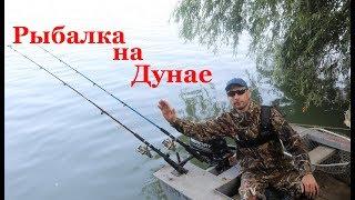 Рыбалка в болгарии на реке дунай