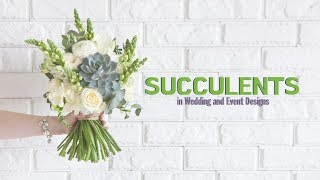 Succulents In Wedding And Event Designs