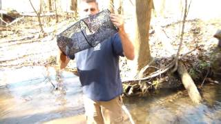 Best minnow trap out of 3 different ones
