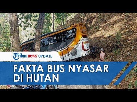 Viral Bus Sudiro Tunggal Jaya Nyasar di Wonogiri Disesatkan Hantu, Polisi Ungkap Fakta Sebenarnya