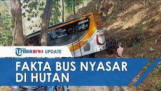 Video Viral Bus Sudiro Tunggal Jaya Nyasar di Wonogiri Disesatkan Hantu, Polisi Ungkap Faktanya