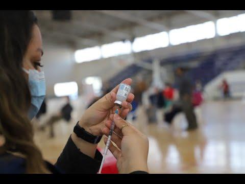 campaña vacunación cipolletti