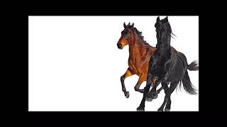 Lil Nas X  Old Town Road ( Feat.Billy Ray Cyrus)[REMIX]{1 HOUR}