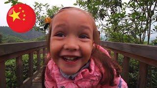 Kaiyang, la mer de thé dans la montagne | #Vlog Guizhou