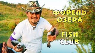 БЕШЕНЫЙ КЛЕВ ФОРЕЛИ на приманки из ALIEXPRESS!!! Зона отдыха FISH CLUB.