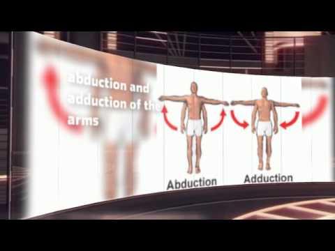 Simulator für die Behandlung von Bandscheibenbruch
