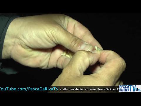 I marcatori lucenti per pesca