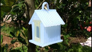 DIY Amazing Bird House from Hot Glue