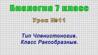 Биология 7 класс Урок 11