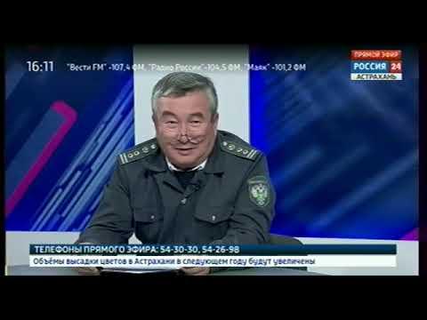 О преимуществах работы во ФГИС «Меркурий» для производителя и потребителя в программе «Интервью» на телеканале «Россия 24»