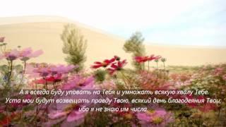 Псалом 69,70_помощь моя и Избавитель мой; Господи!
