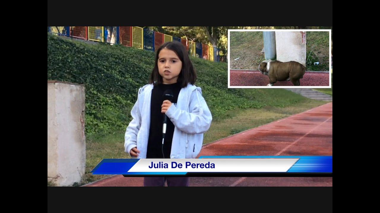 Cine para niños - Noticias del Liceo KIB  - Kids Work - Pequeños Cineastas - Kids In Black