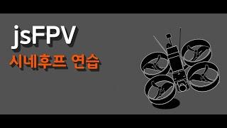 FPV Drone Practice / Cinewhoop Reptile CLOUD 149 / Firefly 4K Split Mini