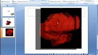 Как вставить анимированные картинки в PowerPoint