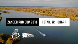 Zander Pro Cup 2018 - 1 ЭТАП