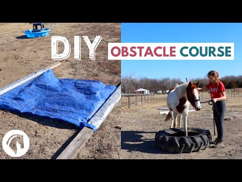 Simple DIY Horse Obstacle Course - YouTube
