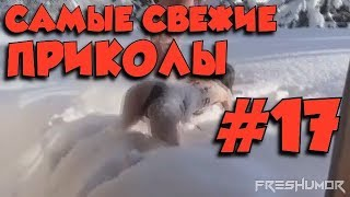 САМЫЕ СВЕЖИЕ ПРИКОЛЫ\ ПОДБОРКА ПРИКОЛОВ #17