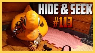 Hide and Seek #113 on Splash - Quack. | Swiftor