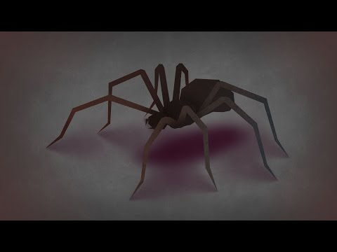 Have You Swallowed Your 8 Spiders for the Year?