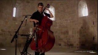 FLAMENCO ON UPRIGHT BASS // RENAUD GARCIA-FONS PLAYS 'BAJO DE GUIA' // BassTheWorld.com