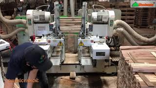 MÁY LÀM MỘNG 2 Đầu Cnc tải nặng Woodmaster giá tốt nhất VN 2020