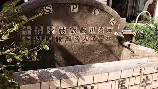 【関内ホール映像ディレクター講座_作品04】