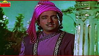 JAVED RAJA- Melody is Always Queen - YouTube