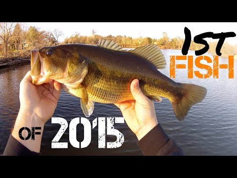 Bass Fishing- 1st Fish of 2015