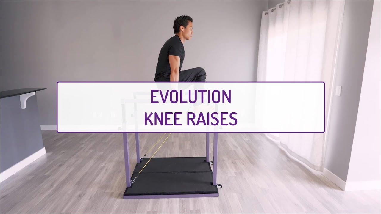 Evolution Knee Raises (on the Bars)