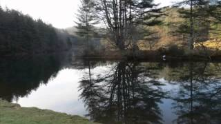 Relaxing in front of a beautiful pond   music, landscapes and relaxation