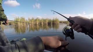 Платная рыбалка в калининской краснодарского края