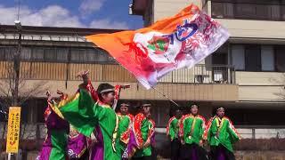 Yosakoiかぬま'19 サブ会場 南NA魅  - アベニール