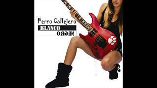 Perro Callejero - Ilegal (Audio Oficial)
