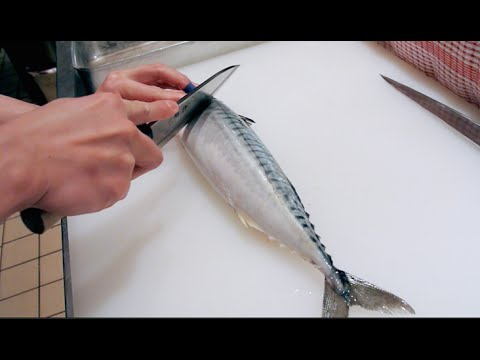 how to cook mackerel tuna