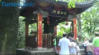 Video : China : China tour scenes - video