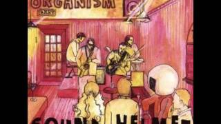 Brite Nitegown (Donald Fagen) - Cover by Organism