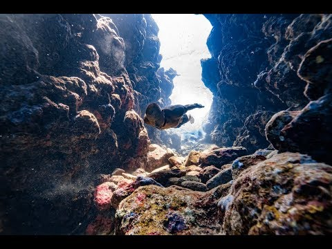 Freediver Dives Into an Underwater Canyon