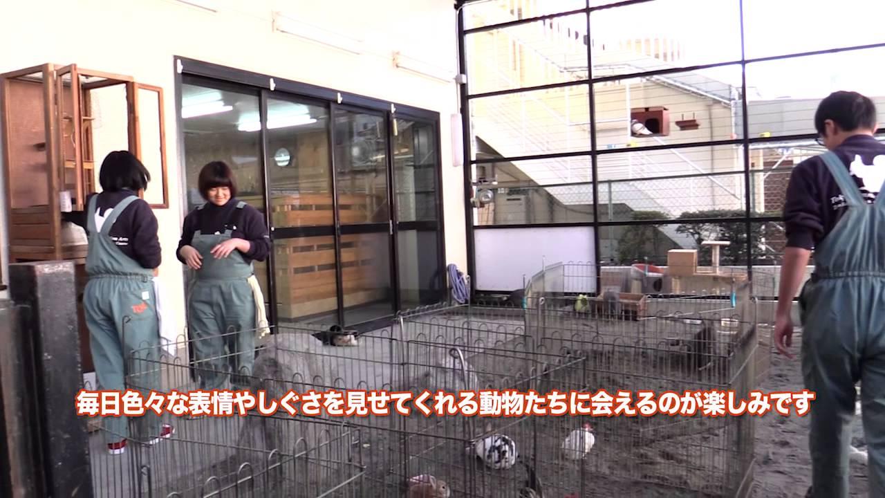 TCA東京ECO動物海洋専門学校 【TCA東京ECO動物海洋専門学校】TCAECOで一緒に勉強する仲間たち