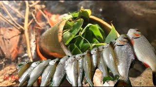 Catch Fish With Leaves   Grilled Fish With Bamboo Tube