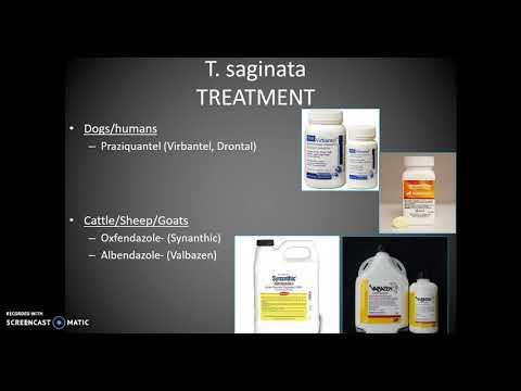 Mga tao na sakit na dulot ng parasites