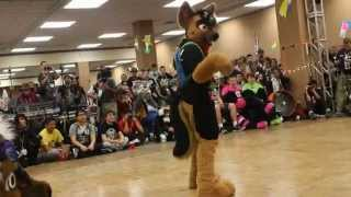 Doryuu - BLFC 2014 Fursuit Dance Competition
