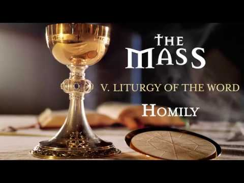The Mass: Part 5 – Liturgy of the Word – Homily