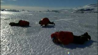 Seal Sounds from Encounters at the End of the World