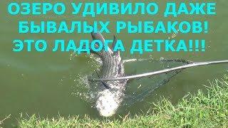 Места для рыбалки в ленинградской области с берега на карте