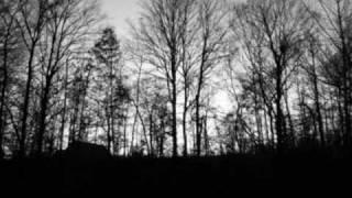 Soulsavers : Some Misunderstanding (Mark Lanegan)