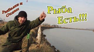 Где ловят красноперку в приморском крае