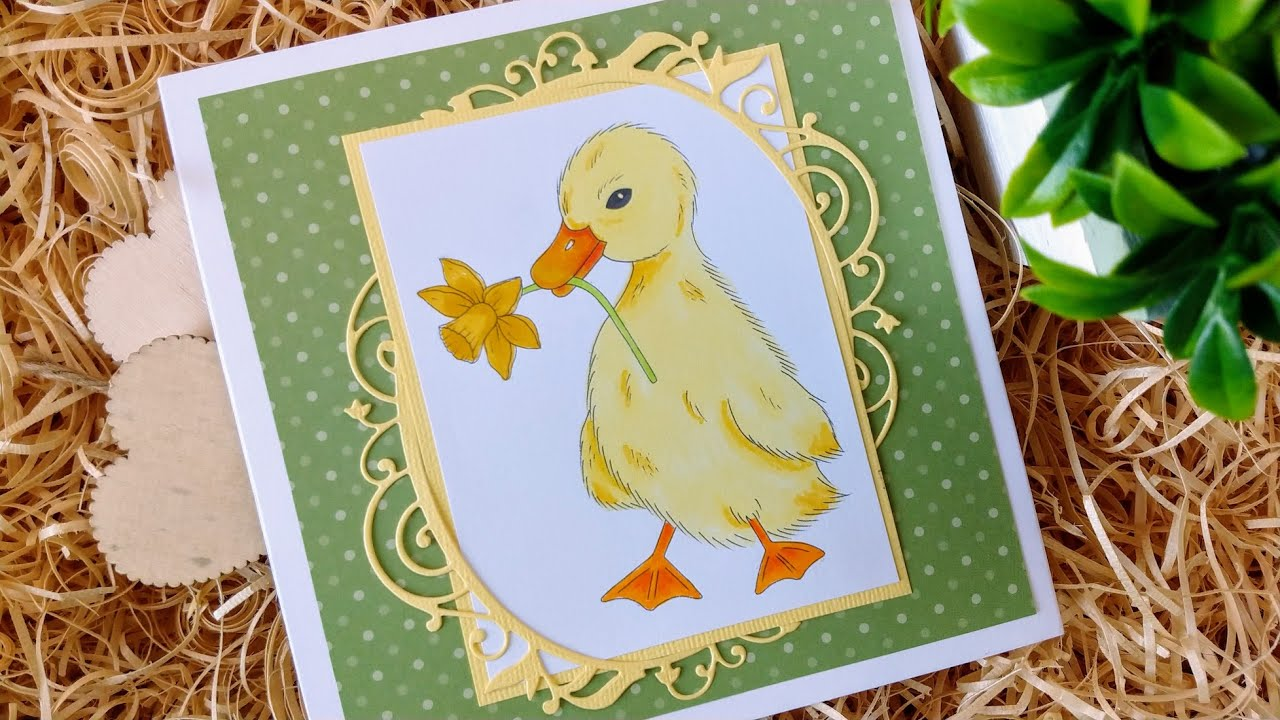 Colouring Duckling